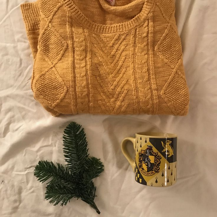 'Happy Day kit' The note says. One of his sweaters, neatly folded for you, with one of your Harry Potter mugs. A Hufflepuff one, to match the yellow sweater and the sunflowers in the vase on your nightstand. A clipping from the pine tree two blocks away for a fresh smell even. Mikey really did think of everything, even a pot of coffee keeping warm!