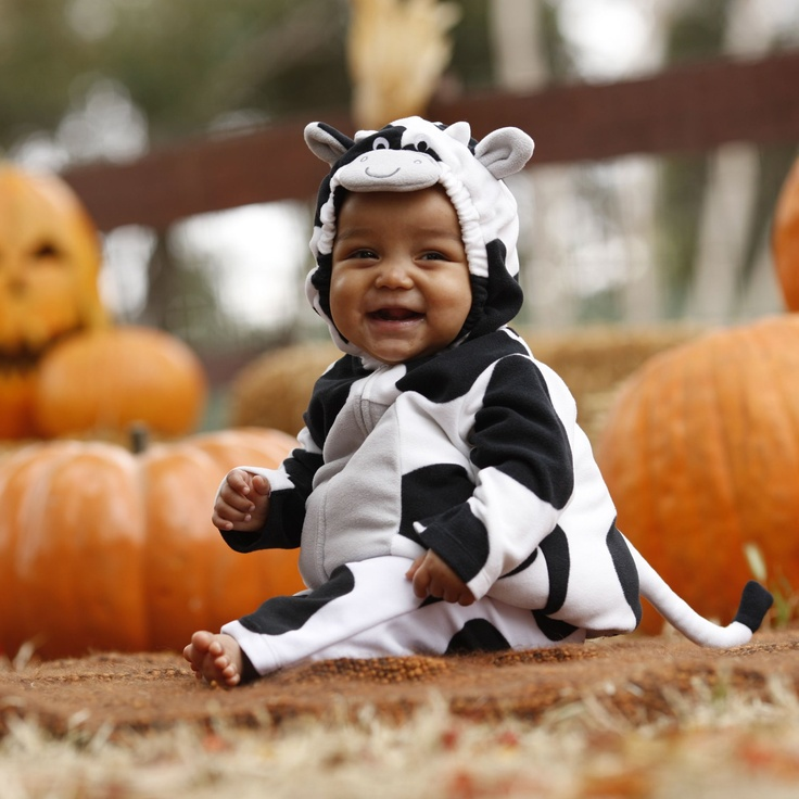 too cute does the baby come with the costume baby boy costumescow costumeshalloween - Baby Cow Costume Halloween