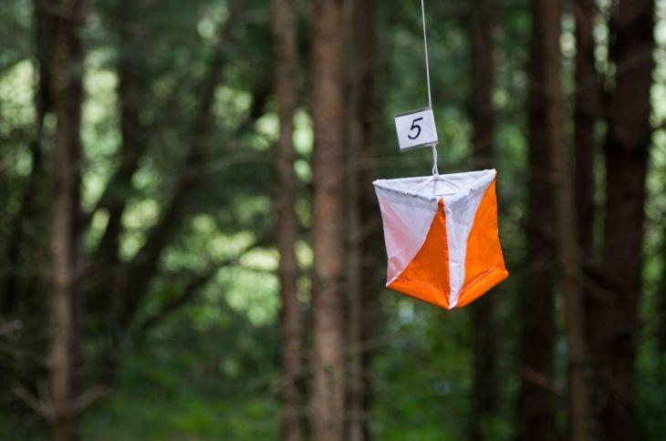 Top 10 #Health Benefits of #Orienteering