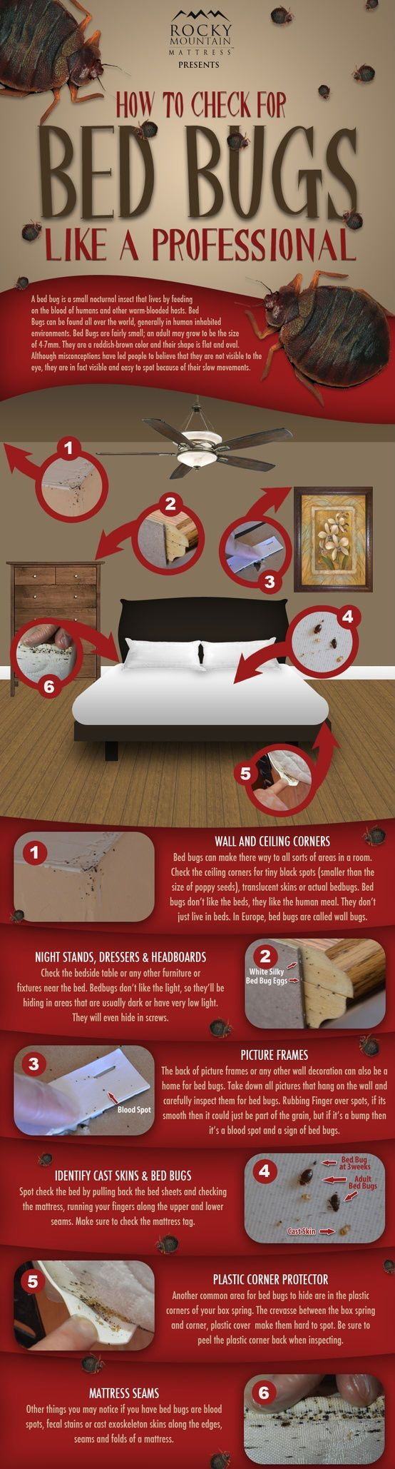 Bed bugs are one of the major problem in US. The company