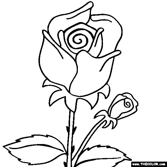 rose flower coloring page rose coloring