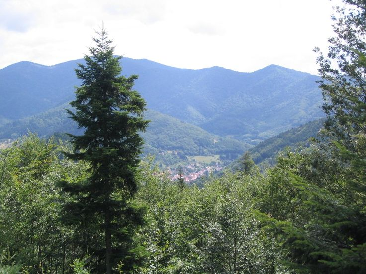 Willer-sur-Thur - #Alsace