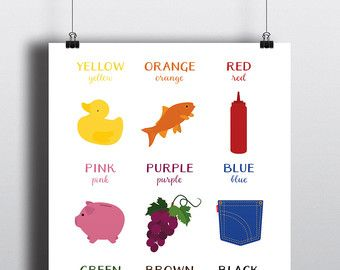 COLOURS Poster  A colourful, quirky and educational print
