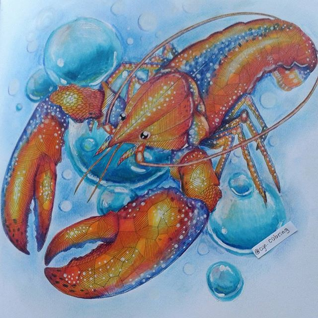Cyncoloring On Instagram PrismacolorSeafoodLobstersAnimal KingdomColoring Book