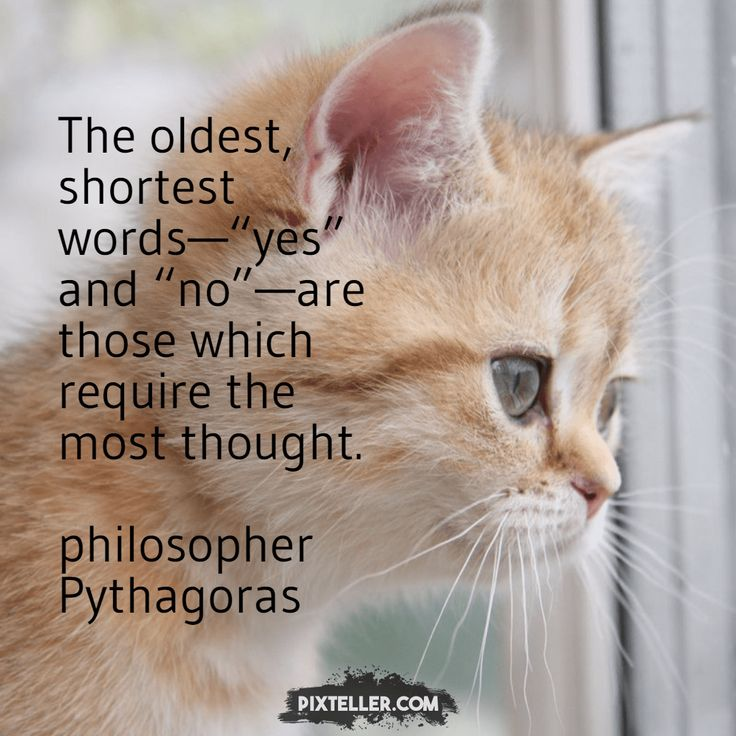 "The oldest, shortest words—""yes"" and ""no""—are those which require the most thought. philosopher Pythagoras"
