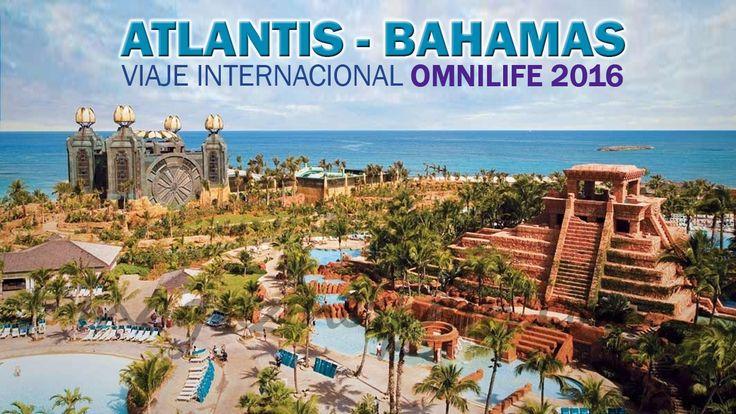 Viaje Internacional Omnilife Atlantis – Bahamas. Llegó la oportunidad forma parte de esta maravillosas experiencia y asistir con todos los gastos pagados   Viaje Internacional Omnilife - http://www.redgrupoangeles.com/viaje-internacional-omnilife/