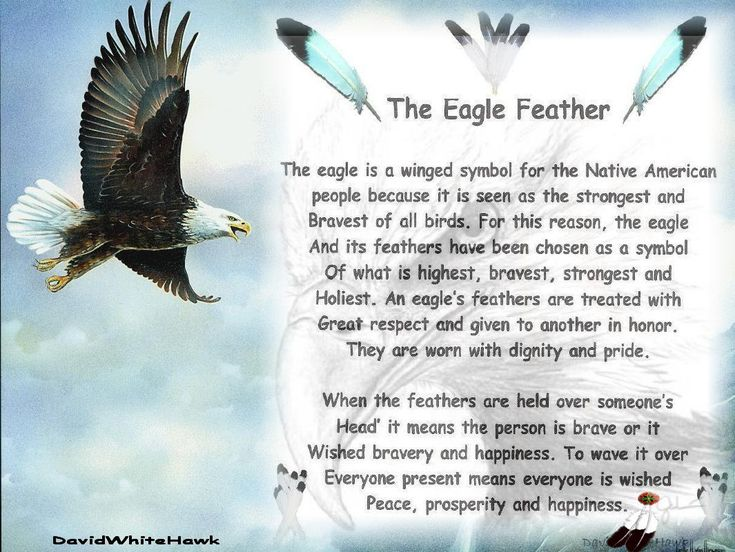 Native American Cherokee Warrior | My Warrior Nation Page Osiyo ale Tsilugi Dudatihna'vi ale Oginalii ...
