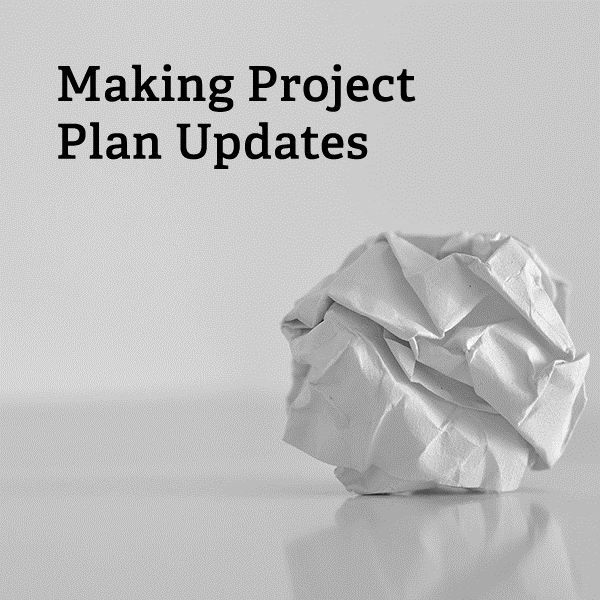 What should be included in project plan updates to make the document an effective resource throughout the entire project?