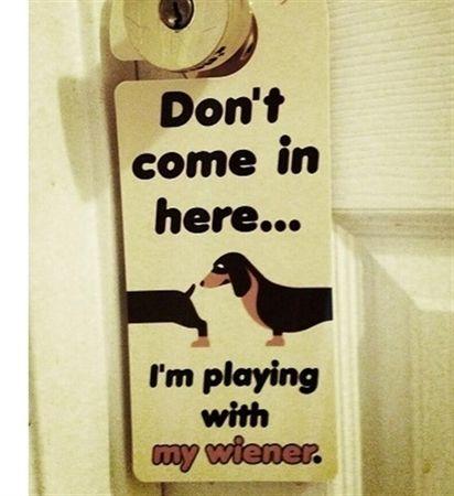 Dachshund Door Hanger (Do Not Disturb)