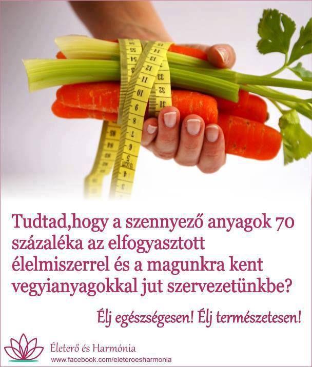 És nem elég megmosni a gyümölcs és zöldségféléket ,hanem fontos tudni a származási helyét is ,és tudnod kell ,sőt kötelességed a saját és családod egészsége érdekében tudatosan vásárolnod !!! A személyi hygiénés termékeknek az összetételét igenis nézd meg !!! Ha kell tájékozódj az interneten mit jelentenek azok a kifejezések amik egyes termékek úgynevezett vevő tájékoztatóin írva vagyon ! Ne dőlj be minden kereskedői értékesítői fogásnak !!! Olvass utána mit jelentenek azok az idegen…