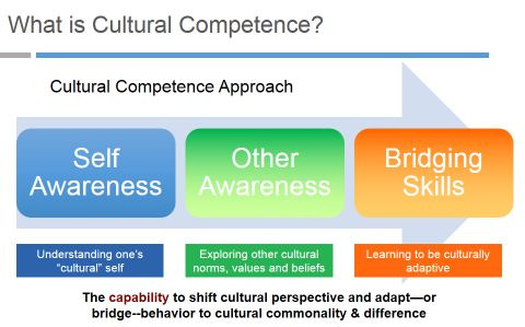 self awareness in cultural competence Running head: increasing cultural competency 1  cultural  competence is to develop a sense of self-awareness and ensuring that.
