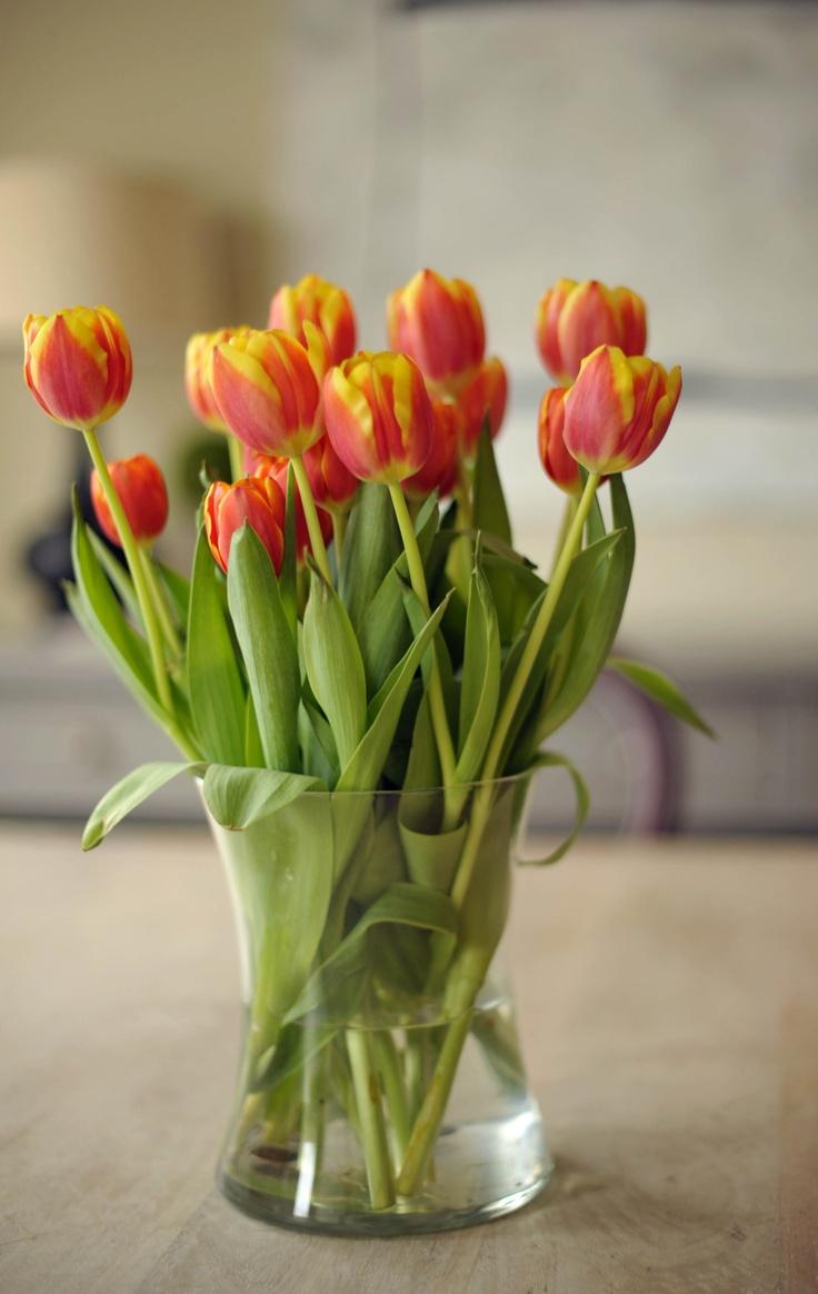 16 best Valentine Flowers images on Pinterest | Valentine day ...