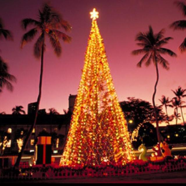 Christmas Tree Hawaii Part - 39: Christmas In Hawaii, Enjoying The Decorations Around Honolulu  #Aqua12staysofchristmas