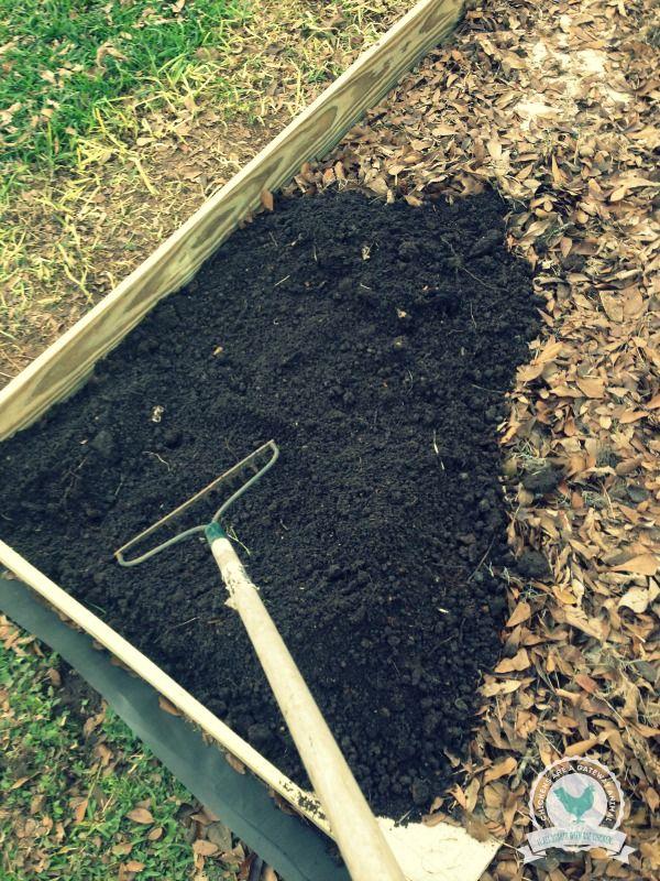 Best 25 Cheap Raised Garden Beds Ideas On Pinterest