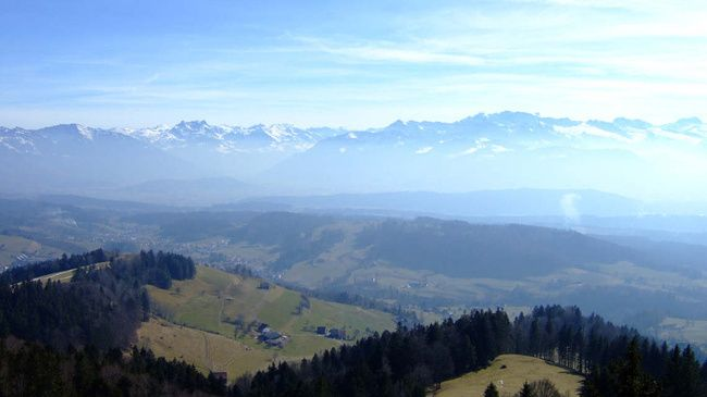 Bachtel tower panorama · Apr-Nov · 1.5h TR · 4.5h HT