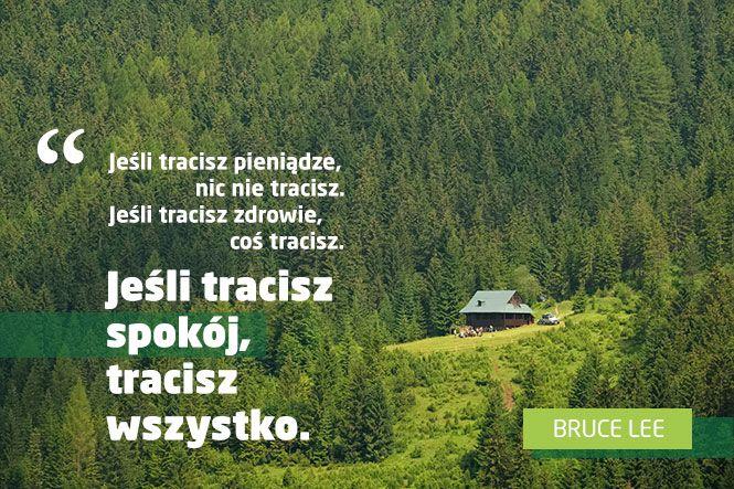 Zwierciadlo.pl - Psychologia - Przetrwać rozwód. Zwyciężanie w pokoju według Bruce'a Lee