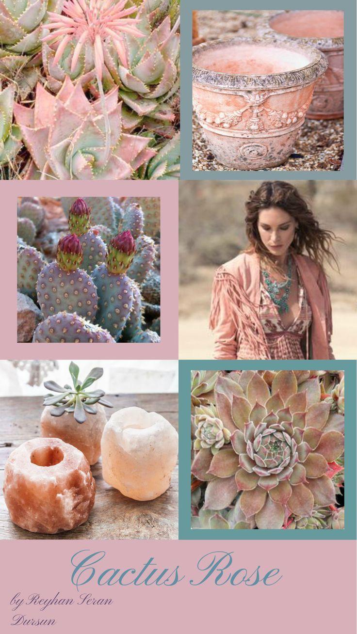 '' Cactus Rose '' by Reyhan Seran Dursun
