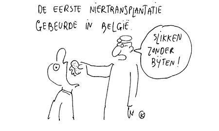 Niertransplantatie