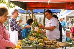 29 August 2014. Feria Orgánica El Trueque will soon open Saturday afternoon in San José's Zapote.