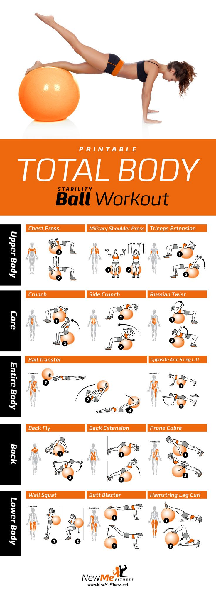 Great total body stability ball workout. Shows the muscles each move…