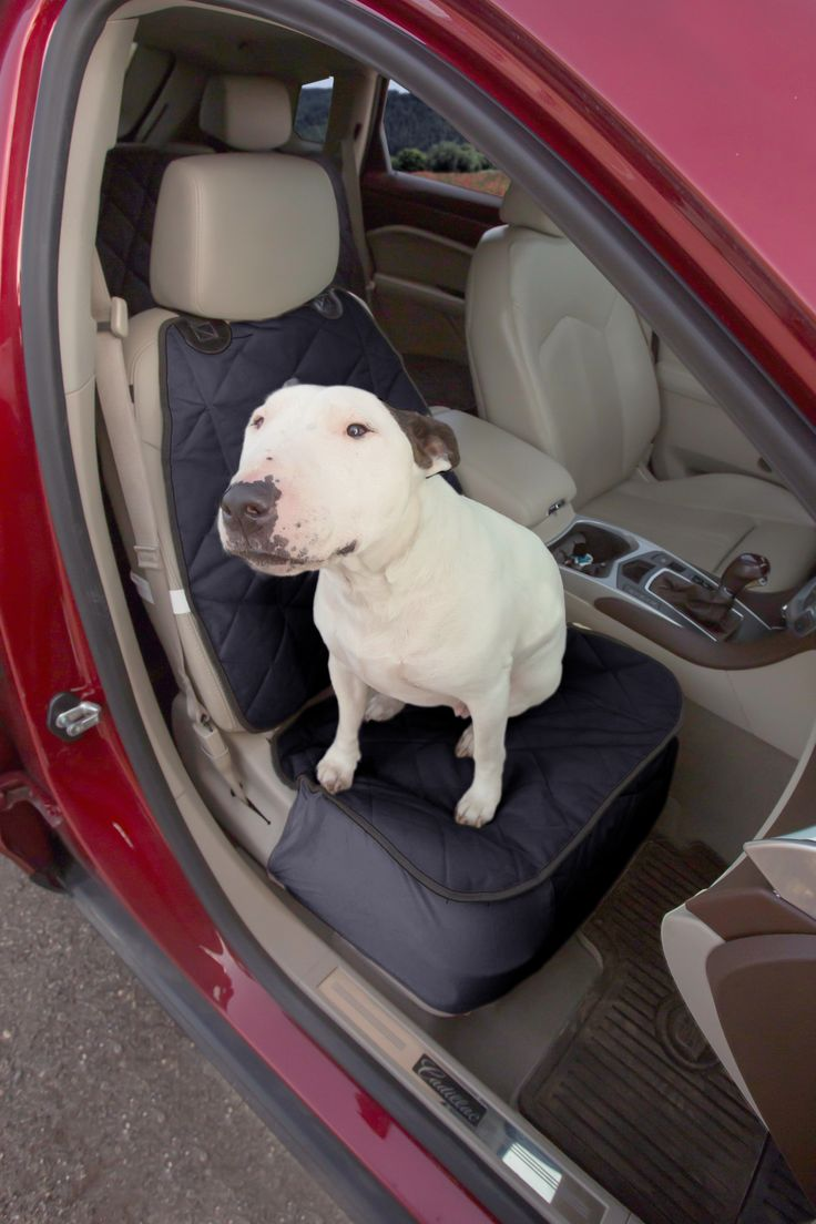 - Does your furry best friend love to go for car rides? Start protecting your seat from fur, dirt and claw marks. - This luxurious seat cover is beautifully designed with a classy look and feel that w