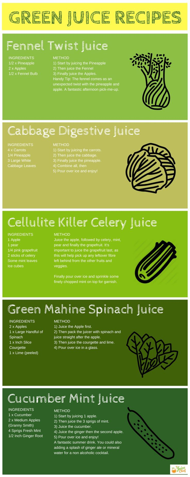 Green Juice Recipes for health, vitality, weight loss and more. Learn everything there is to know about Green Juices as well as get access to more recipes today via The Juice Chief.