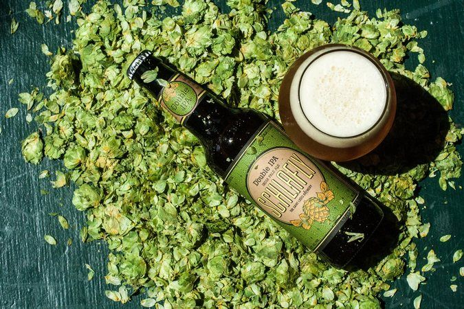 Schlafly Beer Double IPA just released in Hop Allocation Series https://n.kchoptalk.com/2uC4Biw