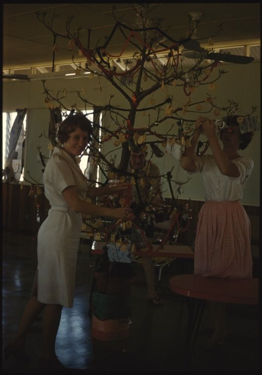 146014PD: Robin Berry, Bill Birnie and Eleanor Randell decorating the Christmas tree, Derby, Christmas 1961 https://encore.slwa.wa.gov.au/iii/encore/record/C__Rb4230311