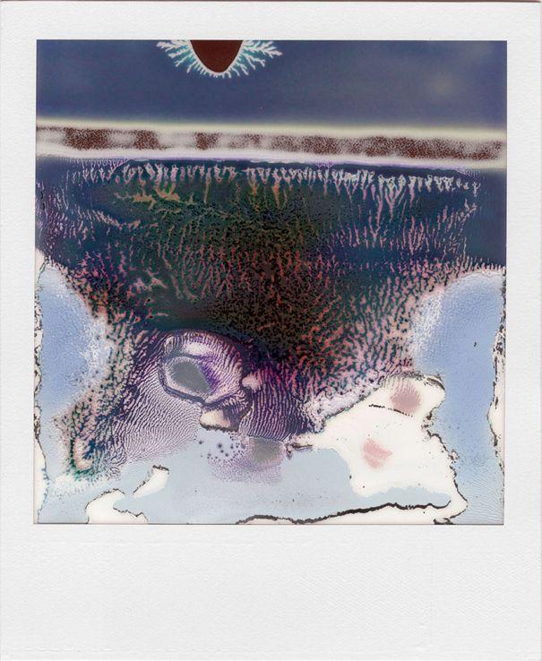 WILLIAM MILLER Ruined Polaroids