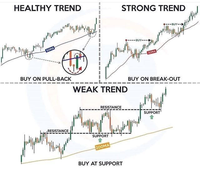 Learn To Trade The Markets Like An Expert Trading Charts First