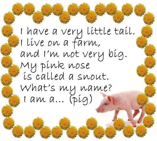 Стишок-загадка про свинку (pig)