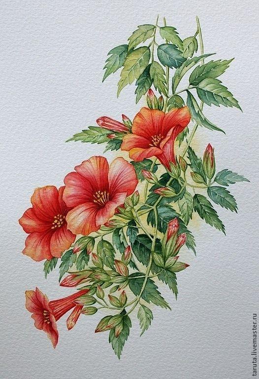 цветы рисунок акварель - Google'da Ara