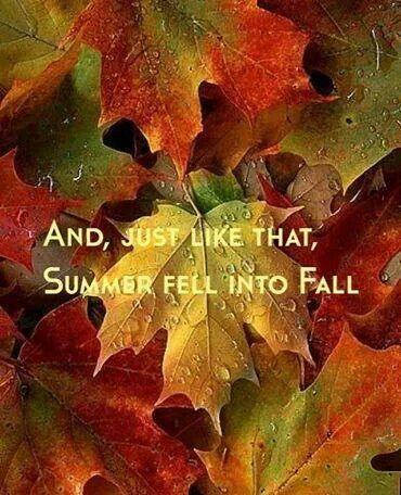 And Just Like That Summer Fell Into Fall