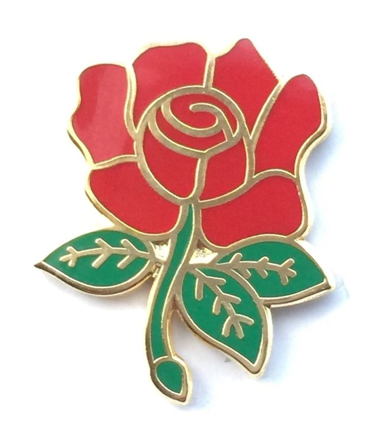 Labour Political Party Red Rose Enamel Lapel Pin Badge | Collectables, Memorabilia, Political & Trade Union | eBay!