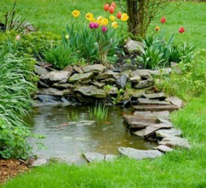 30 best goldfish pond images on pinterest gardening for Small garden with pond design