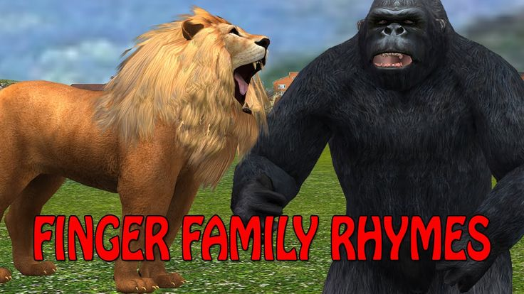 Lion Vs Gorilla finger family kids 3d rhymes | Nursery ...