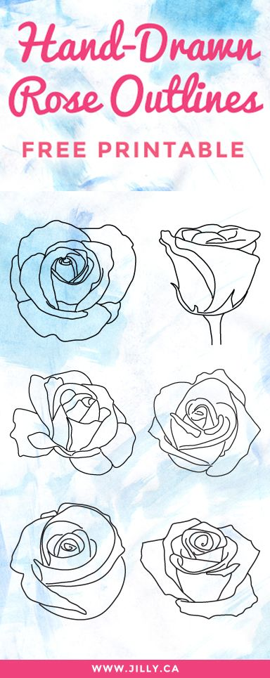 FREE PRINTABLE! 6 Hand-Drawn Rose Outlines (printable PDF and AI file). Great for traditional, hybrid or digital scrapbooking.