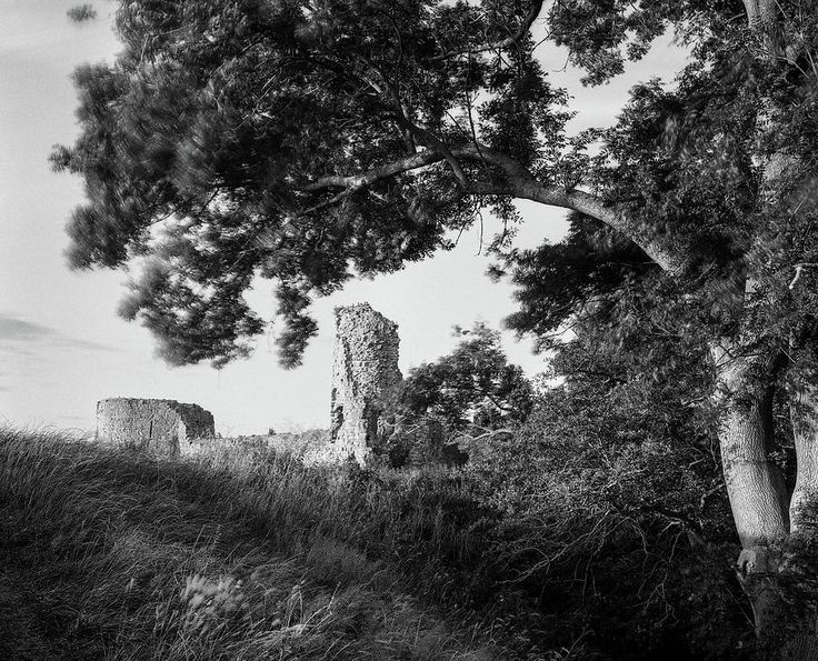 Pevensey Castle Photograph by Will Gudgeon