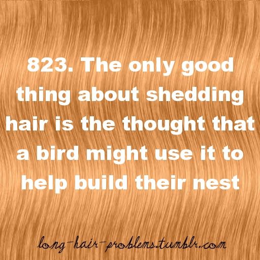 Lol. Long hair problems and benefits.