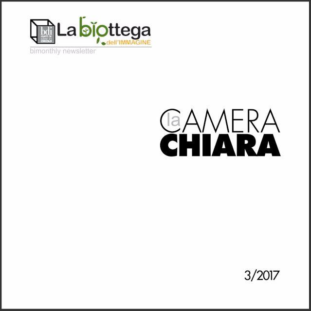 Claudio Amadei: La Camera chiara _https://issuu.com/bdi.siena/docs...