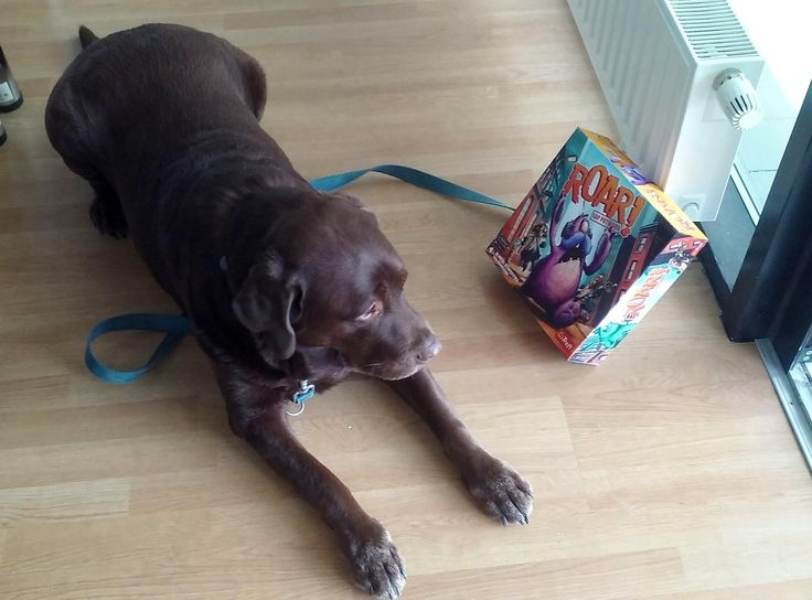 Nasz psi tester szczeknął, że gra jest naprawdę wciągająca! :D