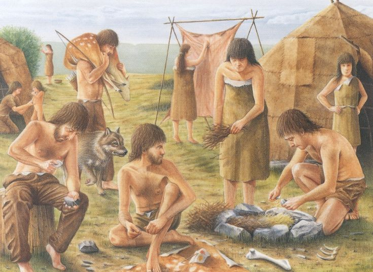 Image result for middle stone age