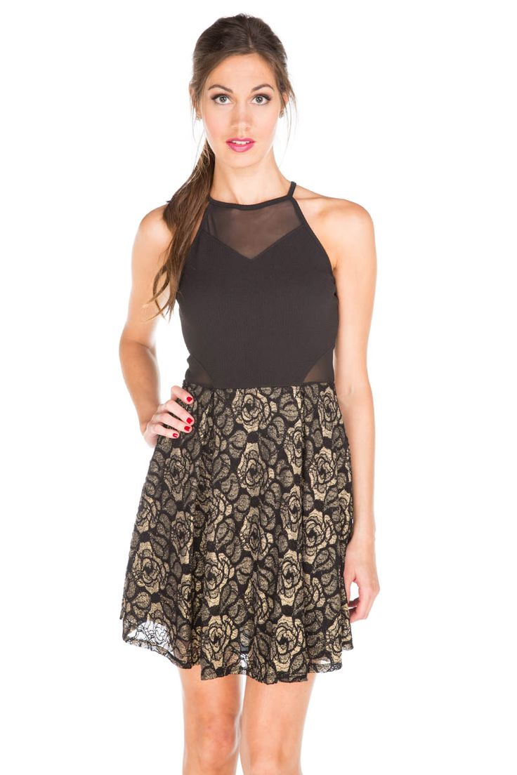 Lace Skater Dress with Mesh Inserts