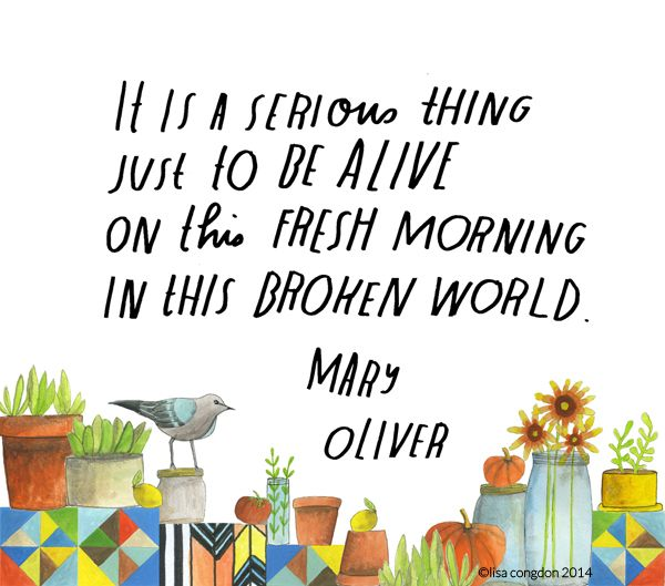 It is a serious thing just to be alive on this fresh morning in this broken world ~Mary Oliver #illustration by Lisa Congdon