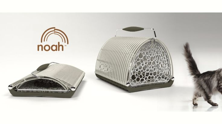 Noah™: the first foldable pet carrier project video thumbnail