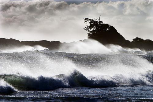 Stormwatching on the west coast of Canada