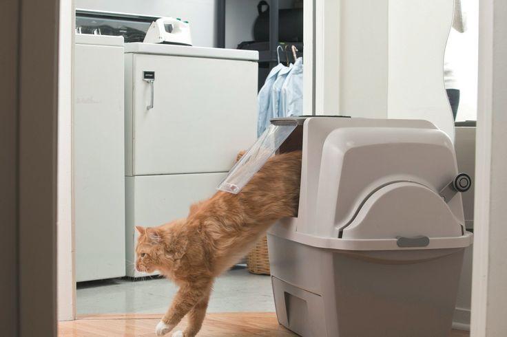 Die selbstreinigende Katzentoilette - http://www.katzenklo-kaufen.de/die-selbstreinigende-katzentoilette/