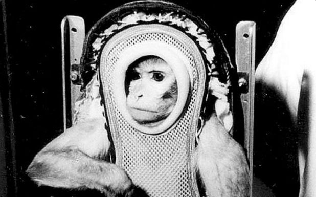 If you were sent into space in vintage space gear, you'd probably return feeling some sort of way too.