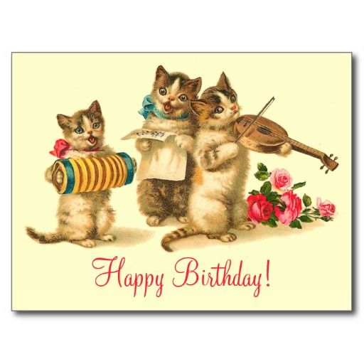 Best 25 Happy birthday funny cats ideas – Funny Musical Birthday Cards