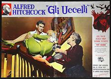 CINEMA-fotobusta GLI UCCELLI taylor, tandy, ALFRED HITCHCOCK
